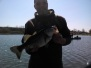 April 26th 2014 Lake Patterson